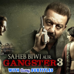 Saheb Biwi Aur Gangster 3 (2018) With Sinhala Subtitles