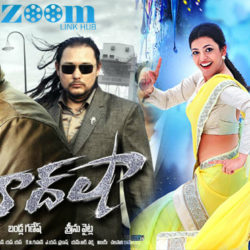 BAADSHAH (2013) With Sinhala Subtitles